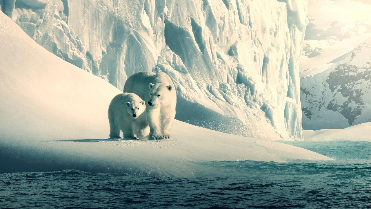 Imagen sobre el documental Nuestro planeta
