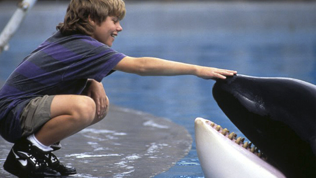 Free Willy 10 Children's Movies The '90s Kids Simply Adore